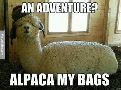 An-adventure---meme
